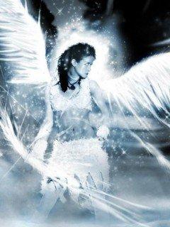 Картинка Angel 240x320 на телефон скачать