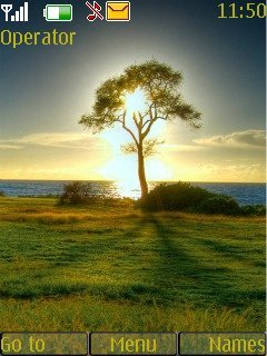 Тема одинокое дерево (Lonely tree) для Нокиа
