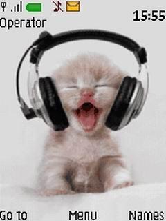 Анимированная тема милый котенок для Nokia