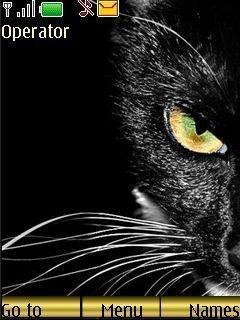 Тема кошачий глаз для телефона Нокиа
