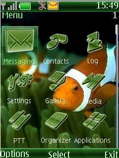 Тема желтые полосатые рыбки на телефон бесплатно